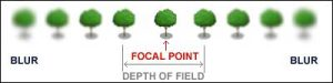 Focal Point and Depth of Field